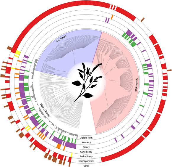 Tree of Sex: A database of sexual systems : Scientific Data.