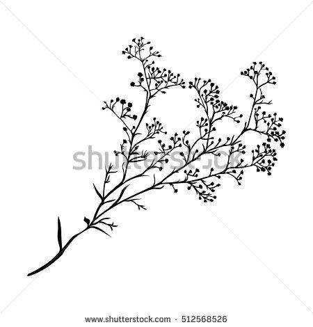 Gypsophila Stock Images, Royalty.