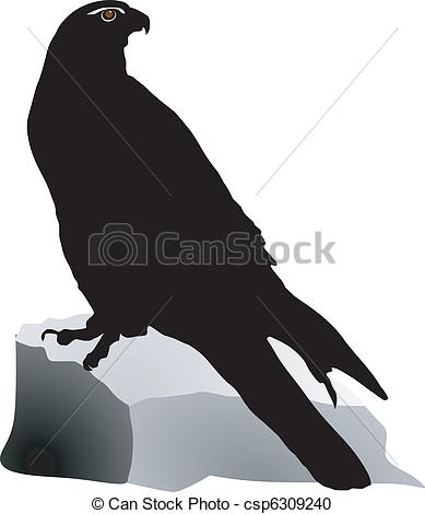 Vector Clipart of gyrfalcon on a white background csp6309240.