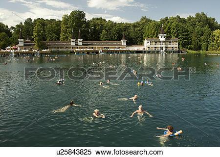 Stock Image of Hungary, Zala, Heviz. People swimming in the.