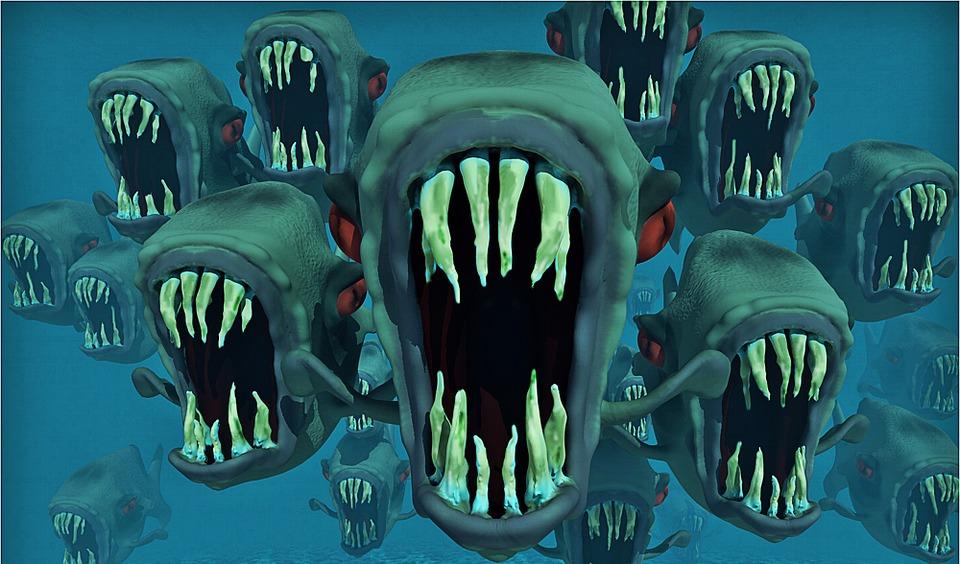 Free photo Piranhas Fish Animals Nightmare Water Fish Swarm.
