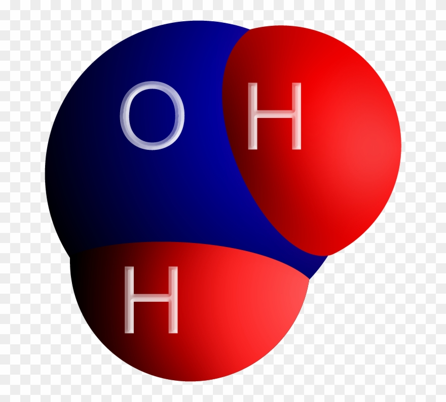 The H2o Molecule.