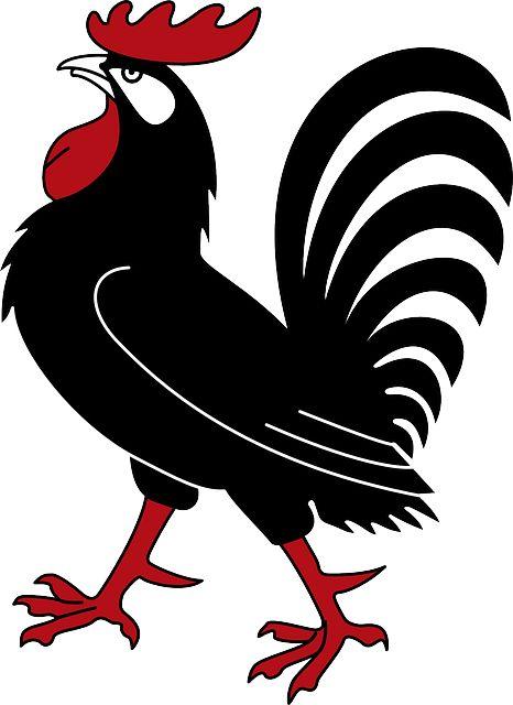 1000+ images about het kippenhok on Pinterest.