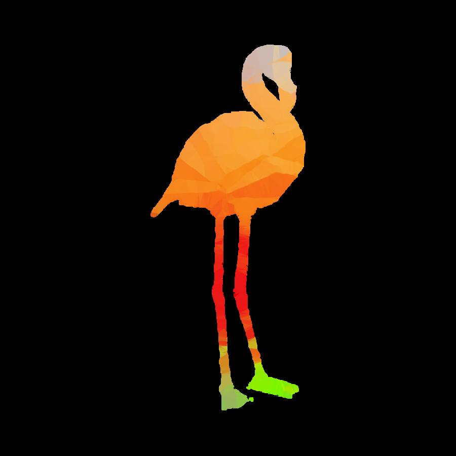 Flamingo Cartoon clipart.