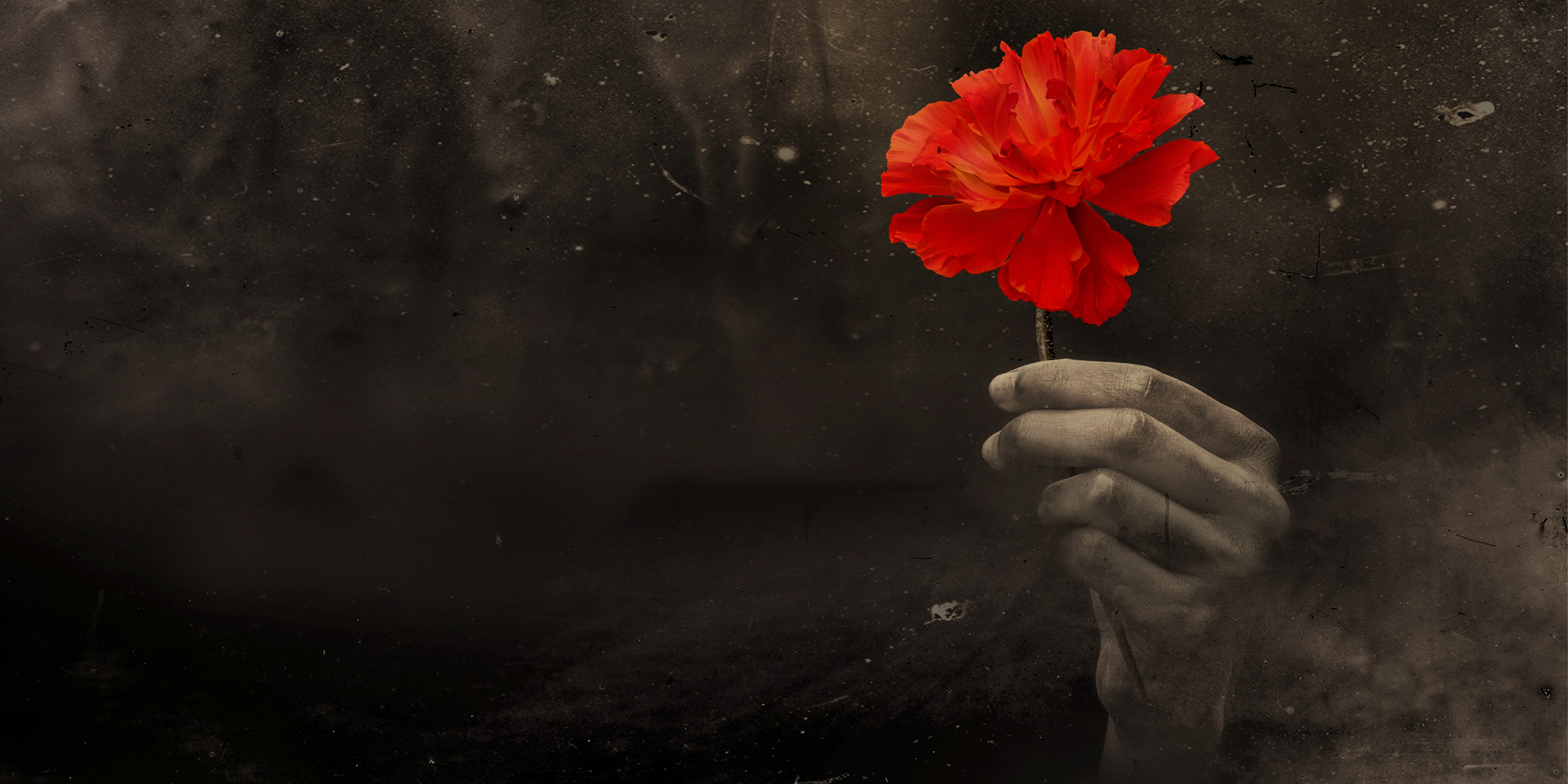Full cast announced for Hadestown at the National Theatre.