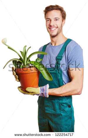 Gardening Man Worker Flowers Isolated Over Stock Photo 73487101.