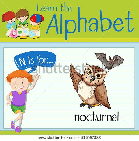 Nocturnal Mammal Stock Vectors, Images & Vector Art.