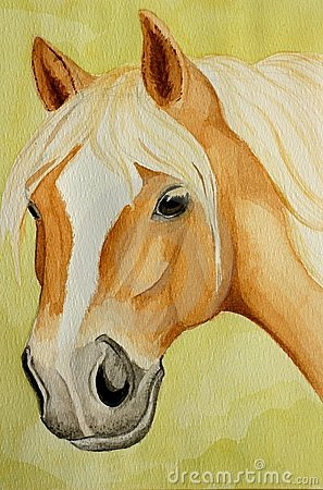 Haflinger Horse Painting Royalty Free Stock Photo.