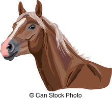 Haflinger Illustrations and Stock Art. 16 Haflinger illustration.