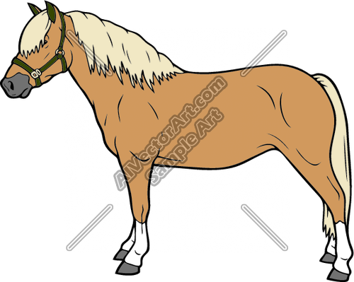 Haflinger01NC2clr Clipart and Vectorart: Animals.