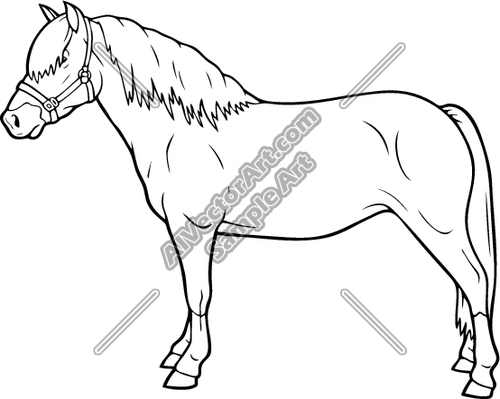 Haflinger01NC2bw Clipart and Vectorart: Animals.