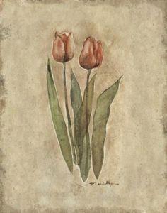 Spring Magnolia Branch PNG Clip Art Image.