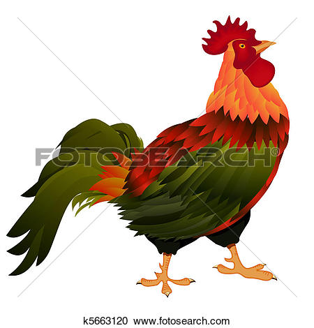Rooster Illustrations and Clipart. 1,901 rooster royalty free.