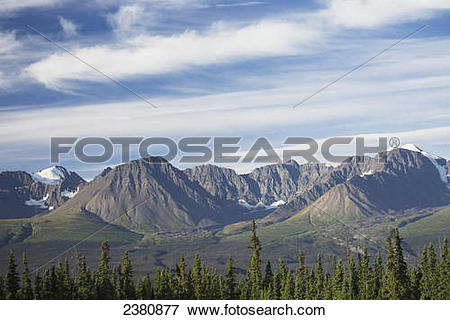 Picture of Rugged mountain range and forest; Haines Junction.