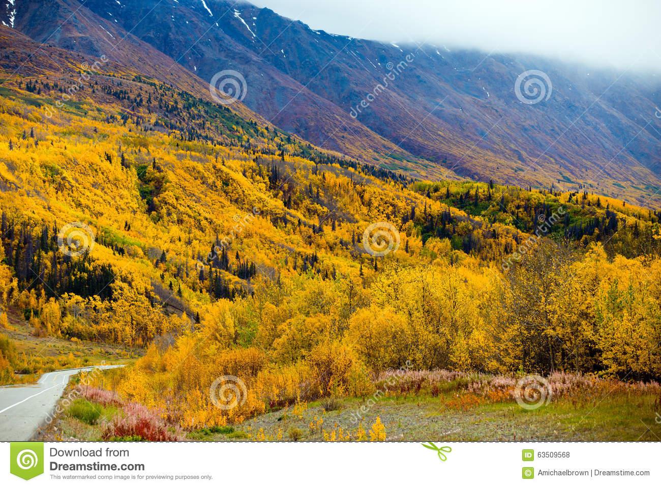 Alaska Highway From Haines Junction, Yukon Territories To Haines.