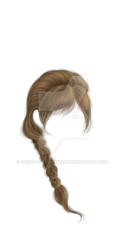 Braided Hair Png Vector, Clipart, PSD.