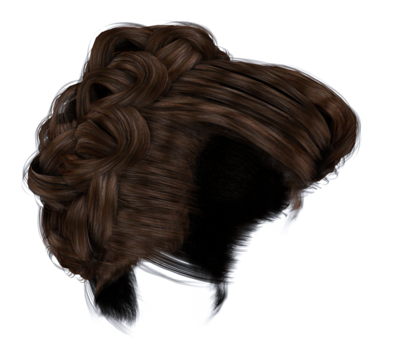Hair bun png 3 » PNG Image.