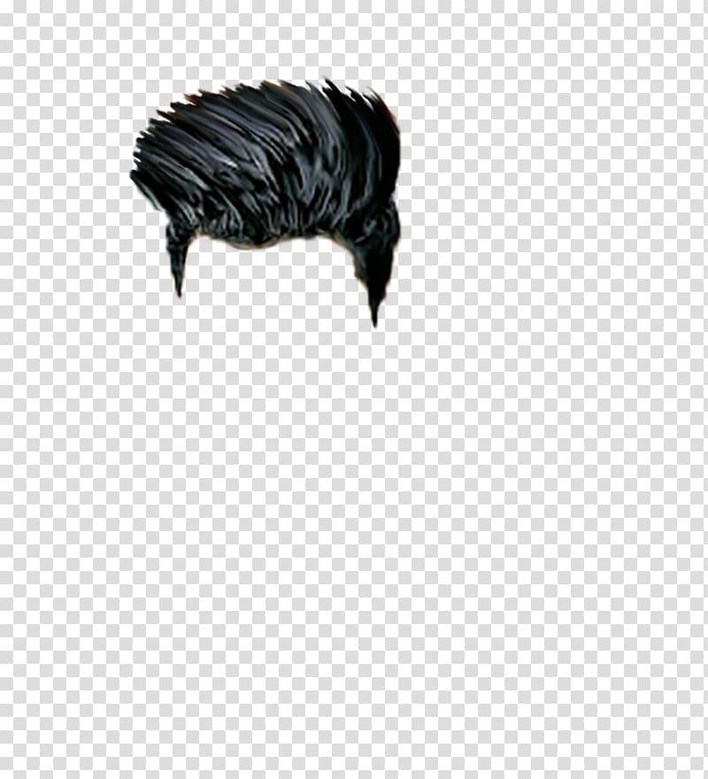 Black hair, editing Hair PicsArt Studio, hair transparent.