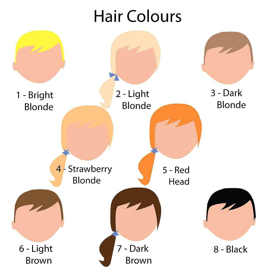 Hair color clipart 7 » Clipart Portal.