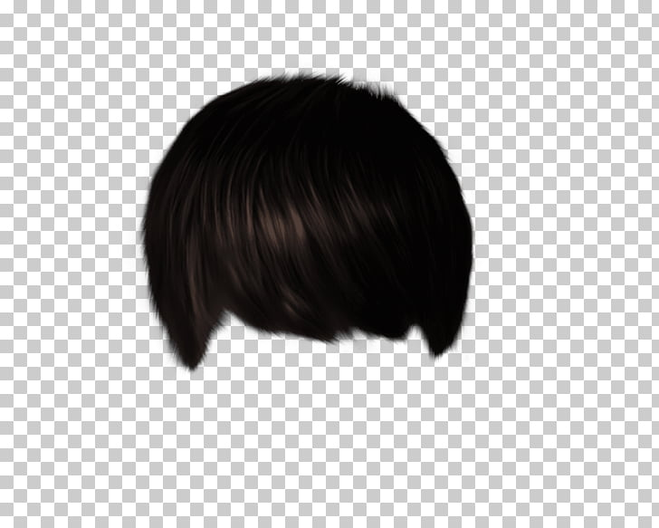 Black hair Hair coloring Wig Black M, hair style for editing.