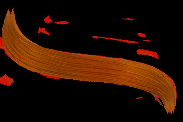 Hair Drawing transparent PNG.