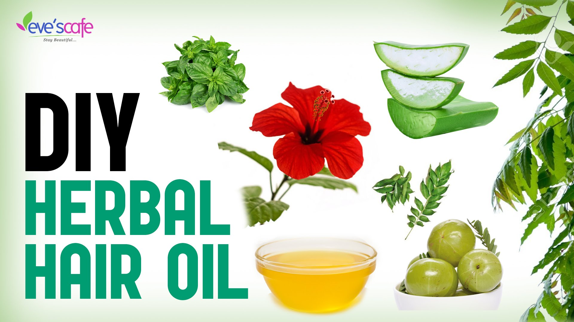 Herbal Hair Oil Preparation For Fast Hair Growth and Stop Hair.