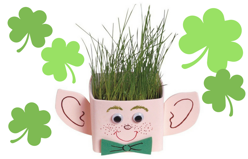 "Leprechaun ""Hair"" Planter."