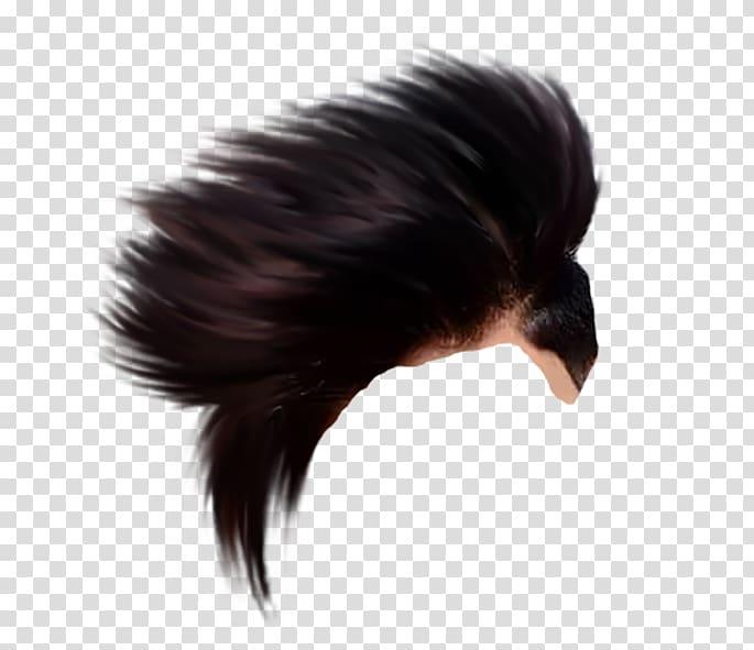 Black human hair, PicsArt Studio editing High.