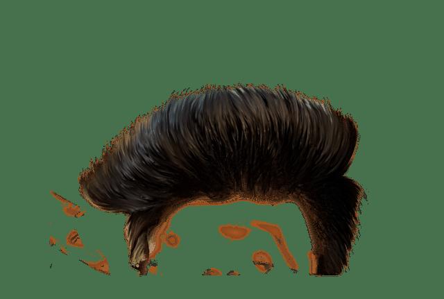 Hair Png CB Hair Png #903.