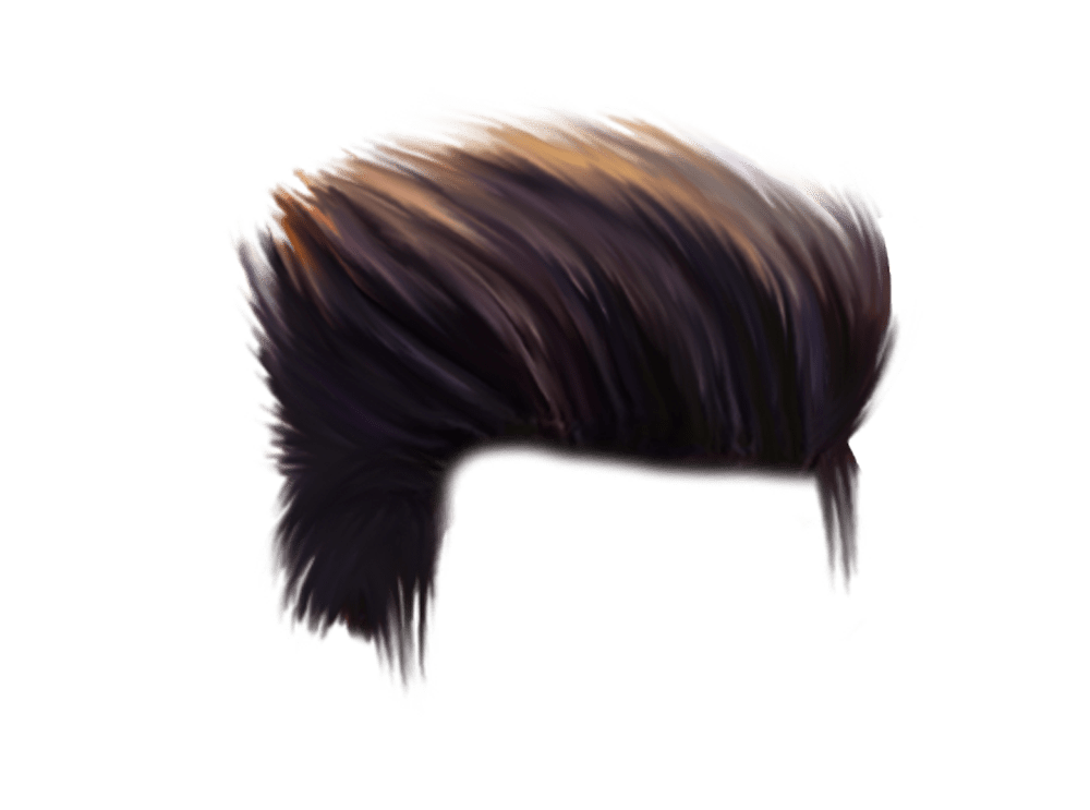 CB Hair Png HD Download.