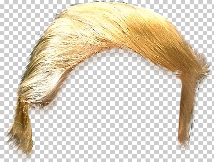 United States Trump Hair , hairstyle template, blonde.