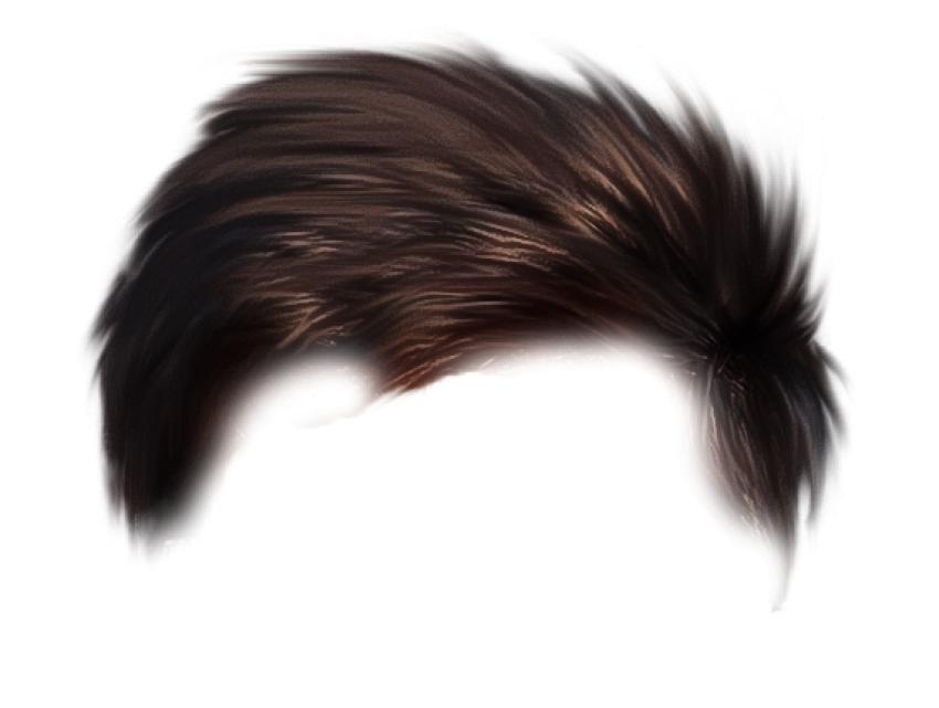 Hair,Hairstyle,Black hair,Long hair,Hair coloring,Fashion accessory.