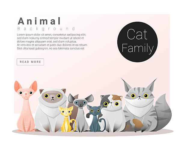 Cartoon Of The Funny Hairless Cat Clip Art, Vector Images.