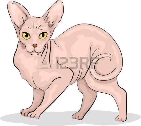 351 Sphynx Cat Cliparts, Stock Vector And Royalty Free Sphynx Cat.