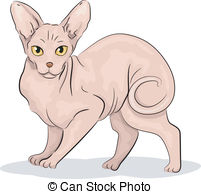 Hairless Illustrations and Clipart. 303 Hairless royalty free.