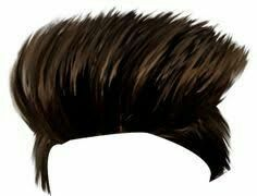 103 Best Hair png images.