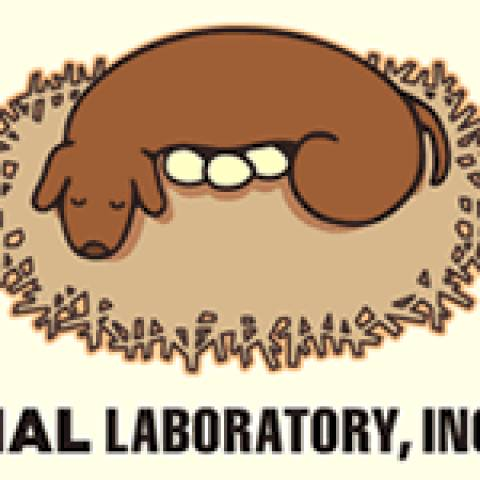 HAL Laboratory, Inc. screenshots, images and pictures.