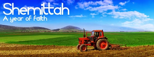 Halachic food health cnenter clipart.