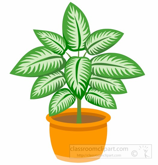 Dieffenbachia Plant N Planter Clipart » Clipart Portal.