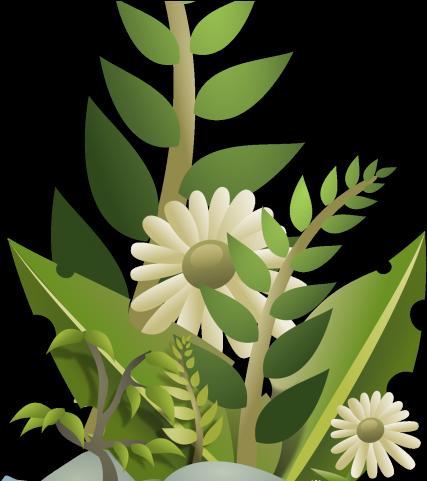 Pot Plant Clipart Halaman.