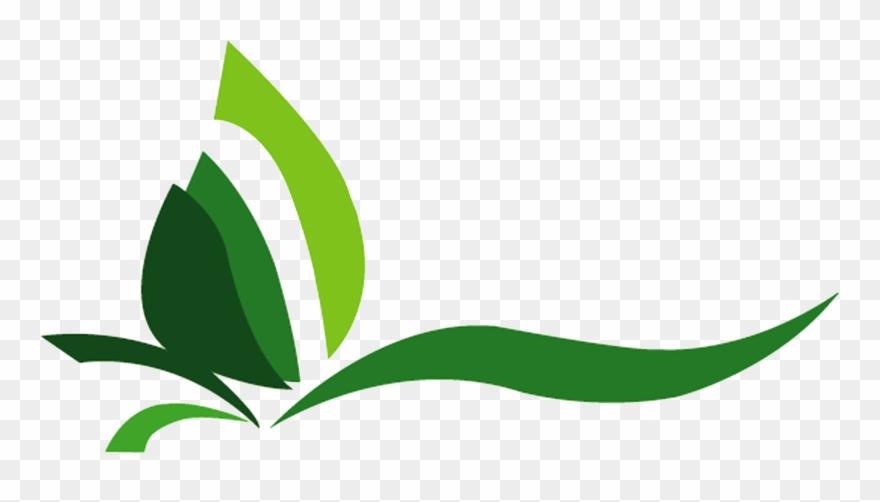 Plants Clipart Halaman.