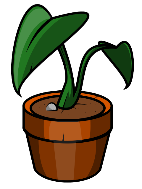 Plant3.