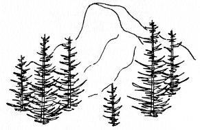 Yosemite Half Dome Clip Art Sketch Coloring Page.