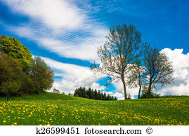 Flower meadow Illustrations and Clip Art. 6,978 flower meadow.