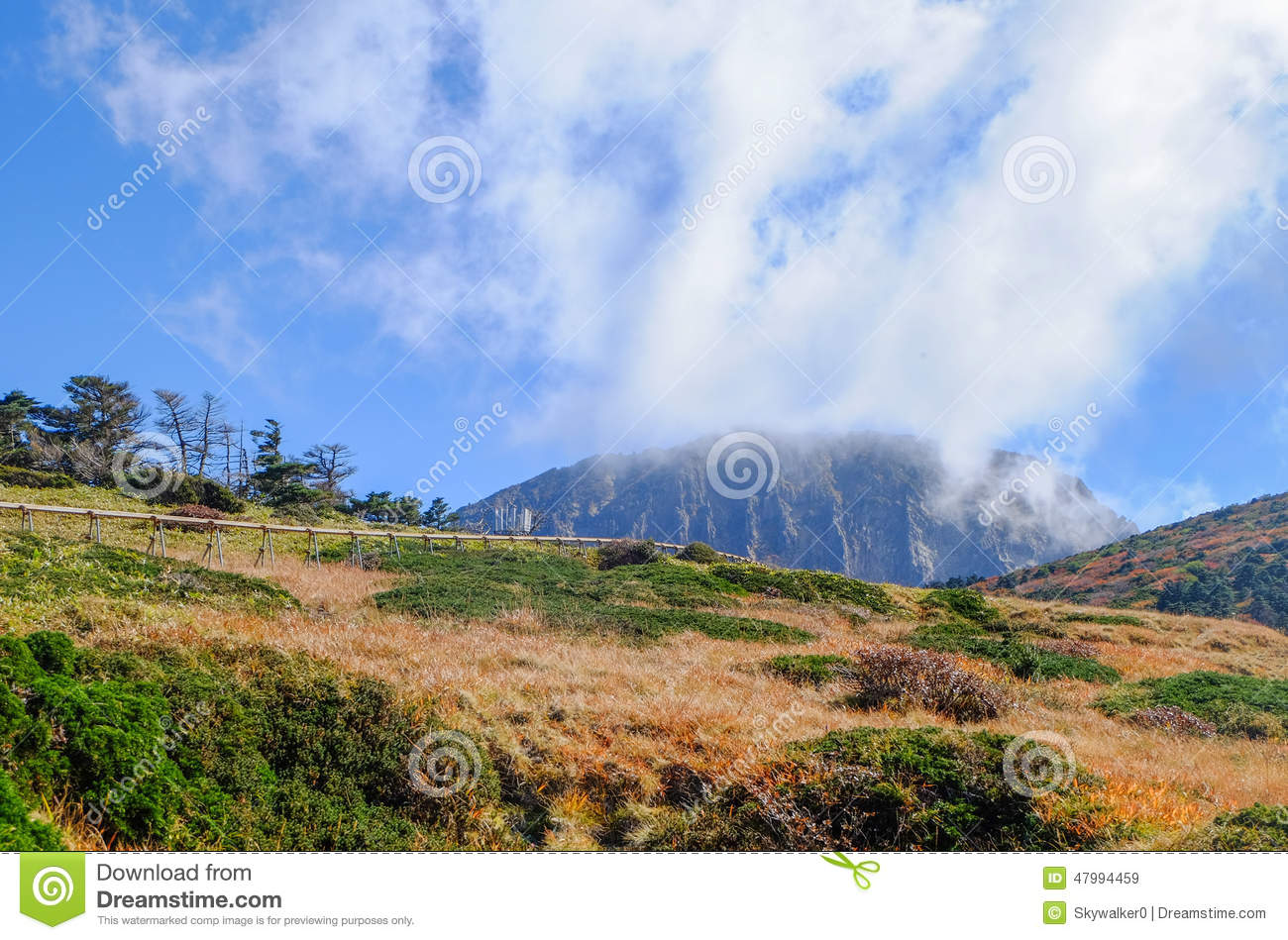 Extinct Volcano,Jeju Halla Mountain, Eorimok Route Stock Photo.