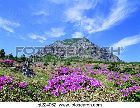Stock Photo of Korea, Cheju Island, Cheju, Halla mountain, halla.