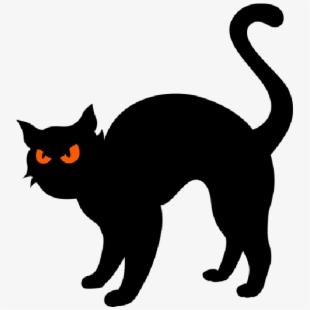 mq #cat #black #halloween.