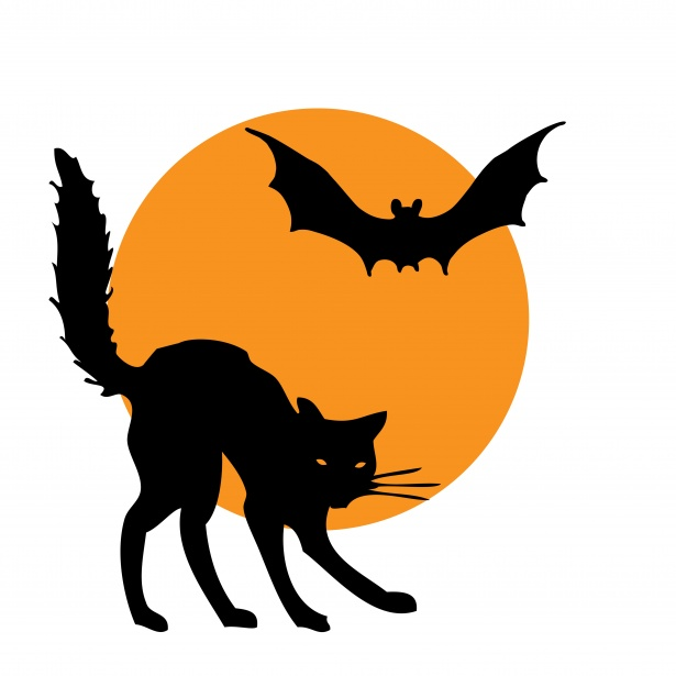 Halloween Clipart Cat Bat Free Stock Photo.
