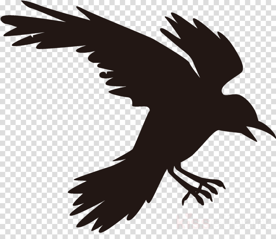 raven halloween crow clipart.