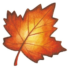 Leaves clipart halloween, Leaves halloween Transparent FREE.